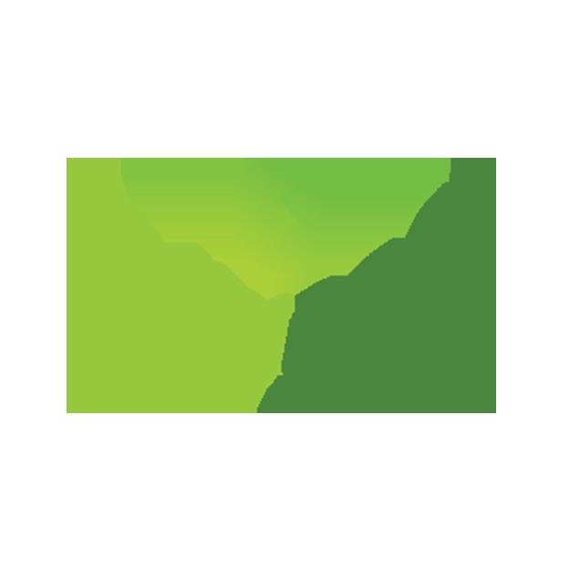 Daily Nest
